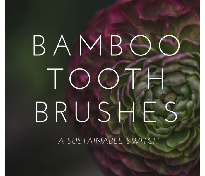 Toothbrushes made out of bamboo?